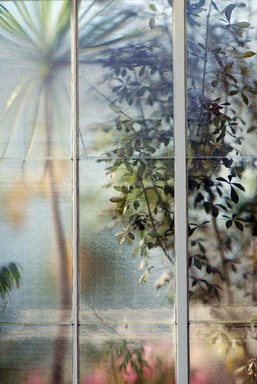 Eleanor Gannon;Botanical Window