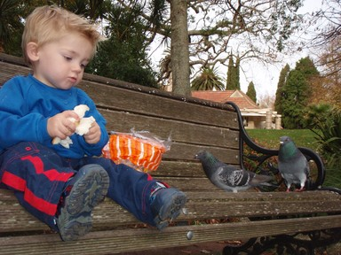 Vance McMillan;Feeding the birds