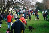 Shunmei Deng; A Saturday in the Hendon Pk, Mt Albert_2;The photo was taken on 6th June, as that was the march of Tunnel or Nothing in Hendon Pk, Mt Albert. However, the recorded info in the camera shows it is the 5th of June, which is not true.